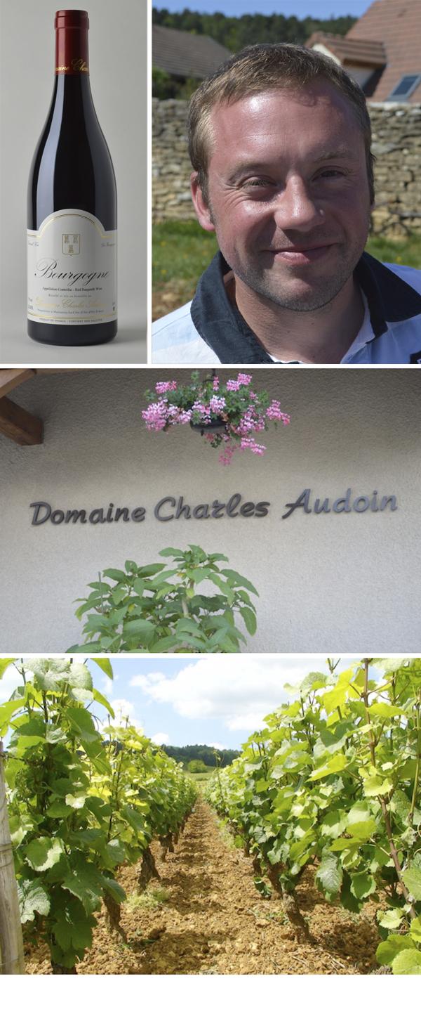 Charles-Audoin
