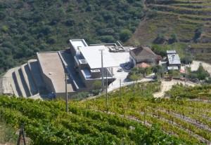Niepoort's new winery in Quinta de Nápoles