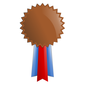 Bronze_Medal_2